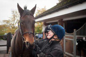 Loan-horses-1