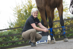 Dr Kathryn Nankervis working in the Equine Therapy Centre at Hartpury