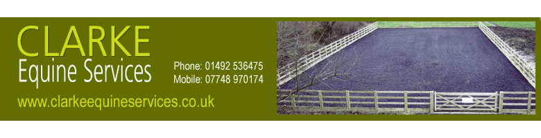 https://www.herefordequestrian.co.uk/wp-content/uploads/2018/06/ClarkeES-banner-ad1.png