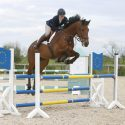 Freelance Rider - A.K Equine Services